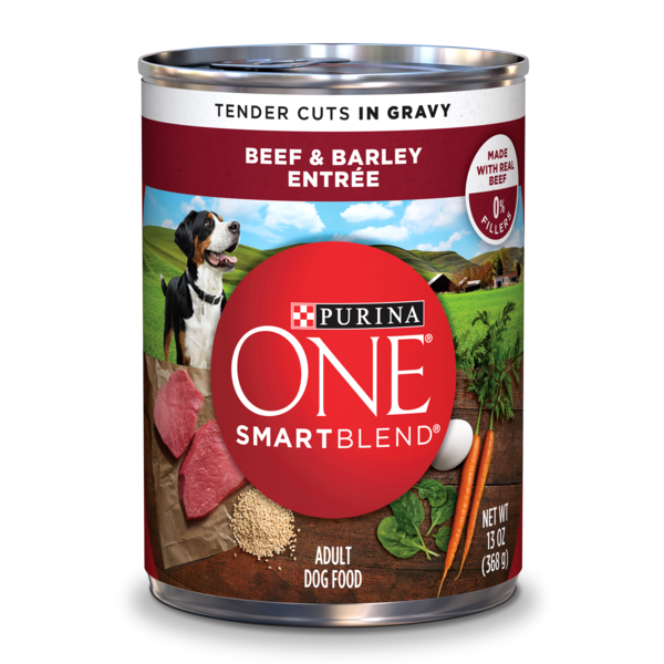 Purina ONE SmartBlend Tender Cuts Beef & Barley Entree in