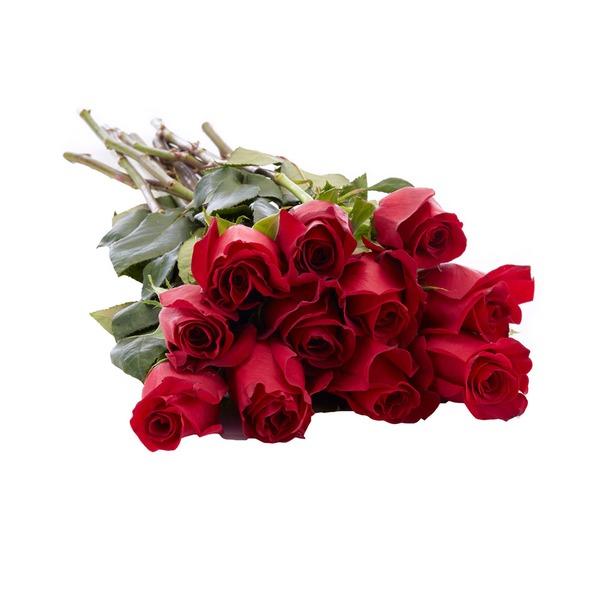 STILEKSTAR |  Gdje kupiti cvijeće putem interneta