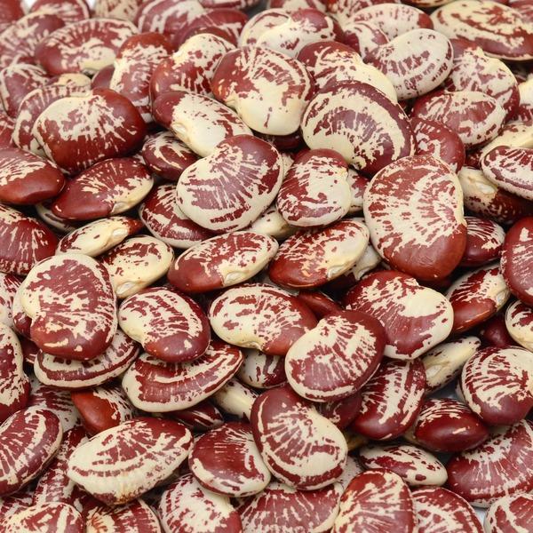 whole foods market christmas lima beans - Whole Foods Christmas Hours