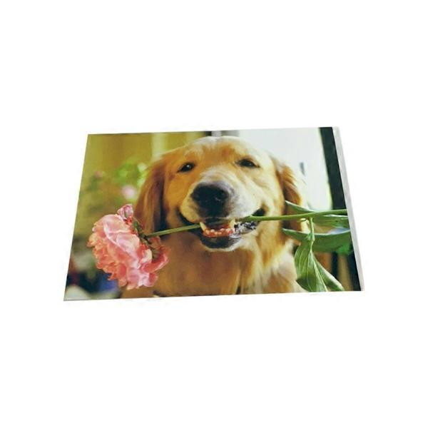 Golden Labrador Greeting Card Blank