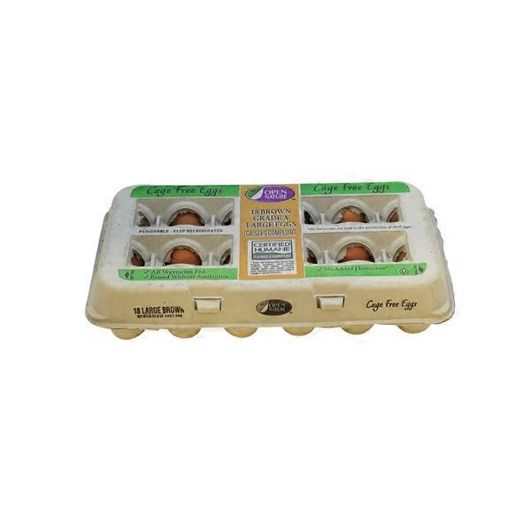 Open Nature Cage Free Grade A Brown Eggs (36 oz) from