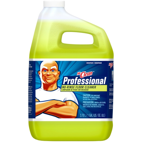 Mr Clean Professional No-Rinse Mr  Clean Professional No-Rinse Floor