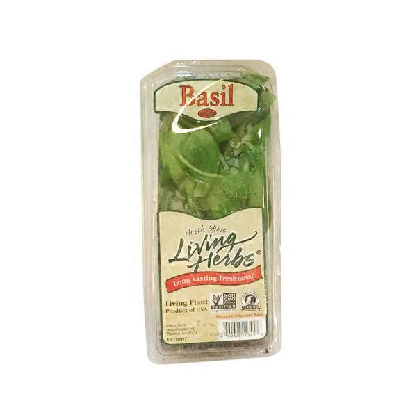 north shore living herbs basil each from stater bros instacart