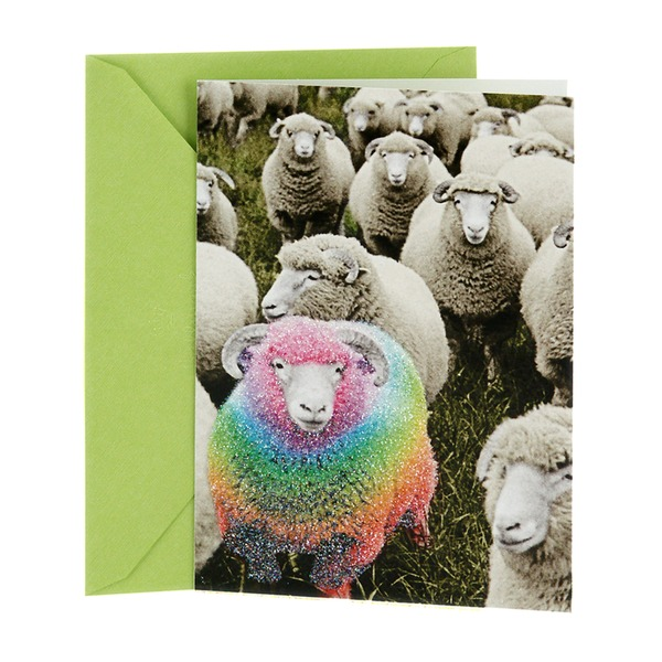 Hallmark Shoebox Funny Humor Birthday Card Rainbow Sheep Joke