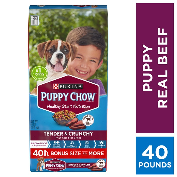 Purina Puppy Chow High Protein Dry Puppy Food Tender Crunchy With Real Beef 40 Lb Instacart