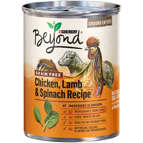 Beyond dog wet grain free chicken lamb spinach recipe ground beyond dog wet grain free chicken lamb spinach recipe ground entree dog food forumfinder Images