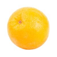 Organic Navel Orange