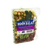 Sproutman Moon Salad