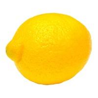 Organic Lemon Bag