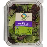 Full Circle Organic Baby Spring Mix
