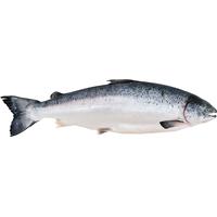 salmon at Best Market - Instacart