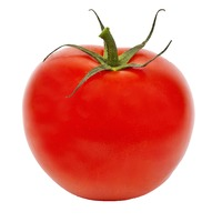 Red On the Vine Tomato