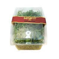 Satur Farms Wild Arugula Salad
