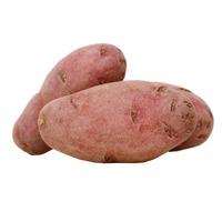 Ruby Fingerling Potato