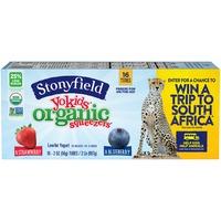 Stonyfield Organic Yokids Organic Strawberry & Blueberry Squeezers Yogurt