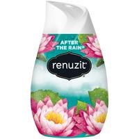 Renuzit Solid Gel Air Freshener Cone, After the Rain