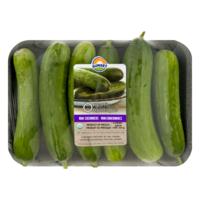 Organic Mini Cucumber